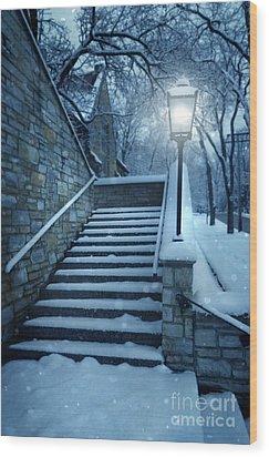 Snowy Stairway Wood Print by Jill Battaglia