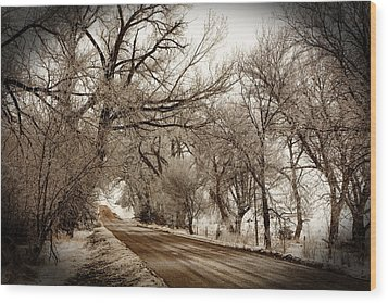 Snowy Trail Wood Print by Shirley Heier