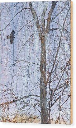 Snowy Tree Wood Print by Carol Leigh