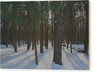 Snowy Trees Wood Print by Stephen Melcher