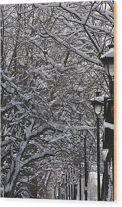 Snowy Way Wood Print by Frederico Borges