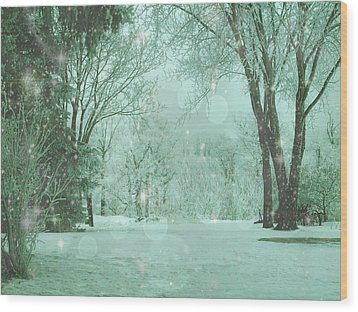 Snowy Winter Night Wood Print by Mary Wolf