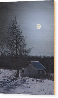 Wood Print featuring the photograph Snowy Winter Shed by Larry Landolfi
