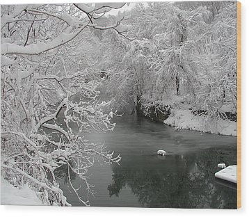 Snowy Wissahickon Creek Wood Print by Bill Cannon