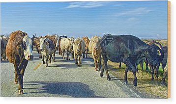 So This Is What Farm To Market Road Means - Panoramic Wood Print by Gary Holmes
