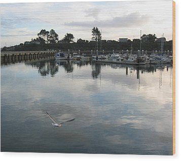 Wood Print featuring the photograph Soar by Dianne Levy