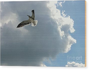 Wood Print featuring the photograph Soaring by Jeanne Forsythe