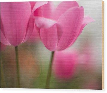 Soaring Pink Tulips Wood Print by Mike Reid