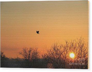 Soaring Sunrise 1 Wood Print by Jay Nodianos
