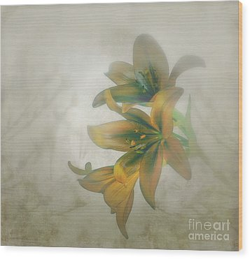 Soft And Sweet Wood Print by Shirley Mangini