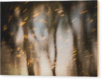 Soft Autumn Wood Print by Steven Milner