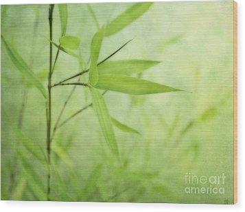 Soft Bamboo Wood Print by Priska Wettstein
