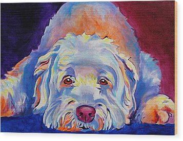 Soft Coated Wheaten Terrier - Guinness Wood Print by Alicia VanNoy Call