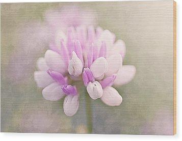 Soft Color Clover Wood Print by Faith Simbeck