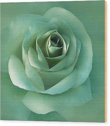 Soft Emerald Green Rose Flower Wood Print by Jennie Marie Schell