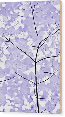Soft Lavender Leaves Melody Wood Print by Jennie Marie Schell