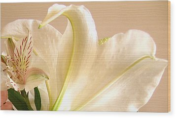 Wood Print featuring the photograph Soft Lily Photograph by Mary Bedy