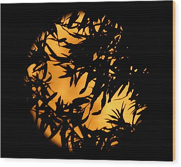 Soft Moon Silhouette Wood Print by Chris Fraser
