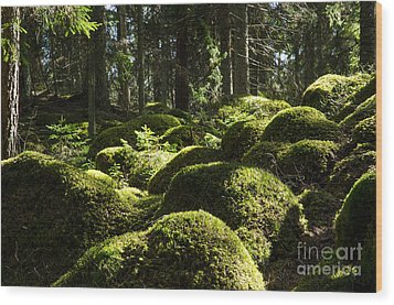 Wood Print featuring the photograph Soft Mossy Rocks by Kennerth and Birgitta Kullman
