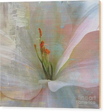 Soft Painted Lily Wood Print by Judy Palkimas