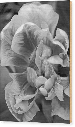 Soft Petal Lady Wood Print by Leslie Cruz