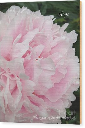 Wood Print featuring the digital art Soft Pink Peony by Jeannie Rhode