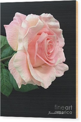 Wood Print featuring the photograph Soft Pink Rose 1 by Jeannie Rhode