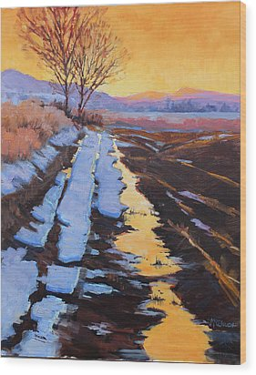 Soft Reflections At Sunset Wood Print by Susan McCullough