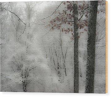 Soft Snow Wood Print by Nancy De Flon