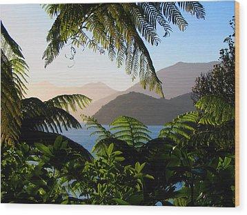 Soft Sun On Hills Through Ferns Wood Print