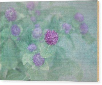 Softly Clover Wood Print by Kim Hojnacki