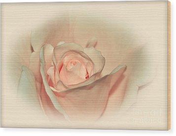 Softly Peach Wood Print by Kaye Menner