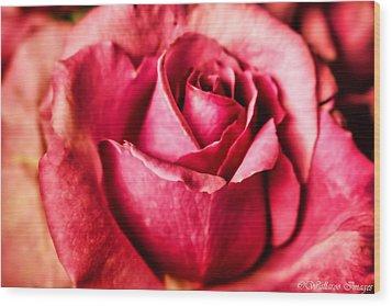 Softly Wood Print by Wallaroo Images
