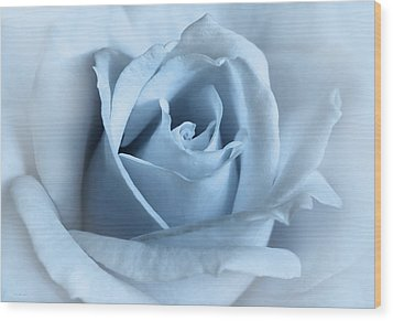 Softness Of A Blue Rose Flower Wood Print by Jennie Marie Schell