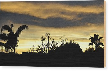 Wood Print featuring the digital art Solana Beach Sunset 3 by Kirt Tisdale