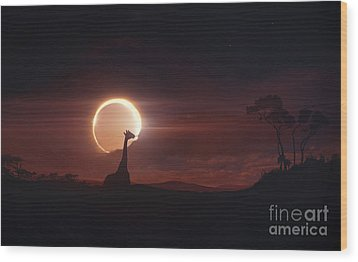 Solar Eclipse Over Africa Wood Print by Tobias Roetsch