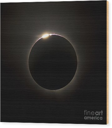 Solar Eclipse With Prominences Wood Print by Philip Hart