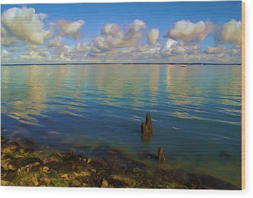 Wood Print featuring the digital art Solent by Ron Harpham