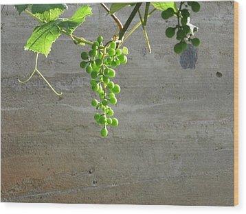 Solitary Grapes Wood Print