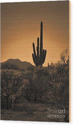 Solitary Saguaro Wood Print by Deb Halloran