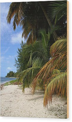 Wood Print featuring the photograph Nude Beach by The Art of Alice Terrill