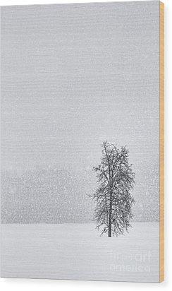 Solitude II Wood Print
