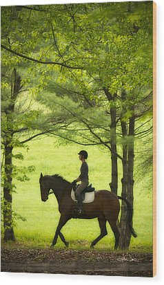 Wood Print featuring the photograph Solitude by Joan Davis
