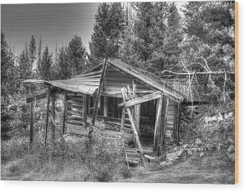 Wood Print featuring the photograph Solitude by Kevin Bone