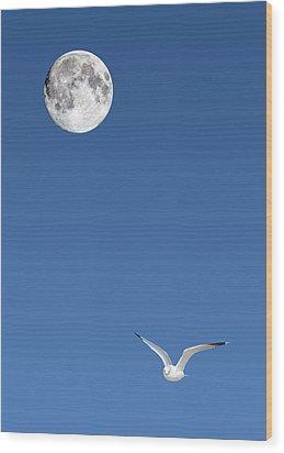 Solitude Wood Print by Michael Peychich