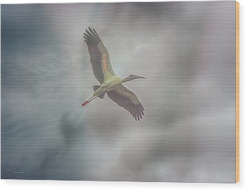 Wood Print featuring the photograph Solo Flight by Dennis Baswell