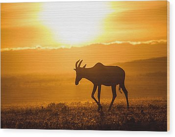 Wood Print featuring the photograph Solo Topi Sunrise by Mike Gaudaur