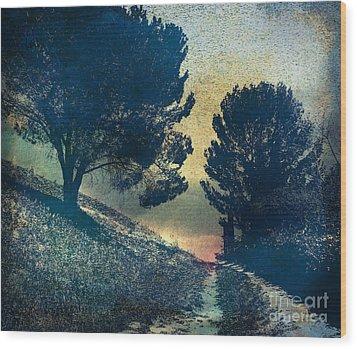 Somber Passage Wood Print by Bedros Awak