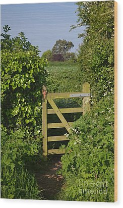 Somerset Countryside Gate Uk Wood Print by Rene Triay Photography
