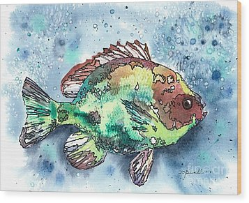 Something's Fishy Wood Print by Barbara Jewell